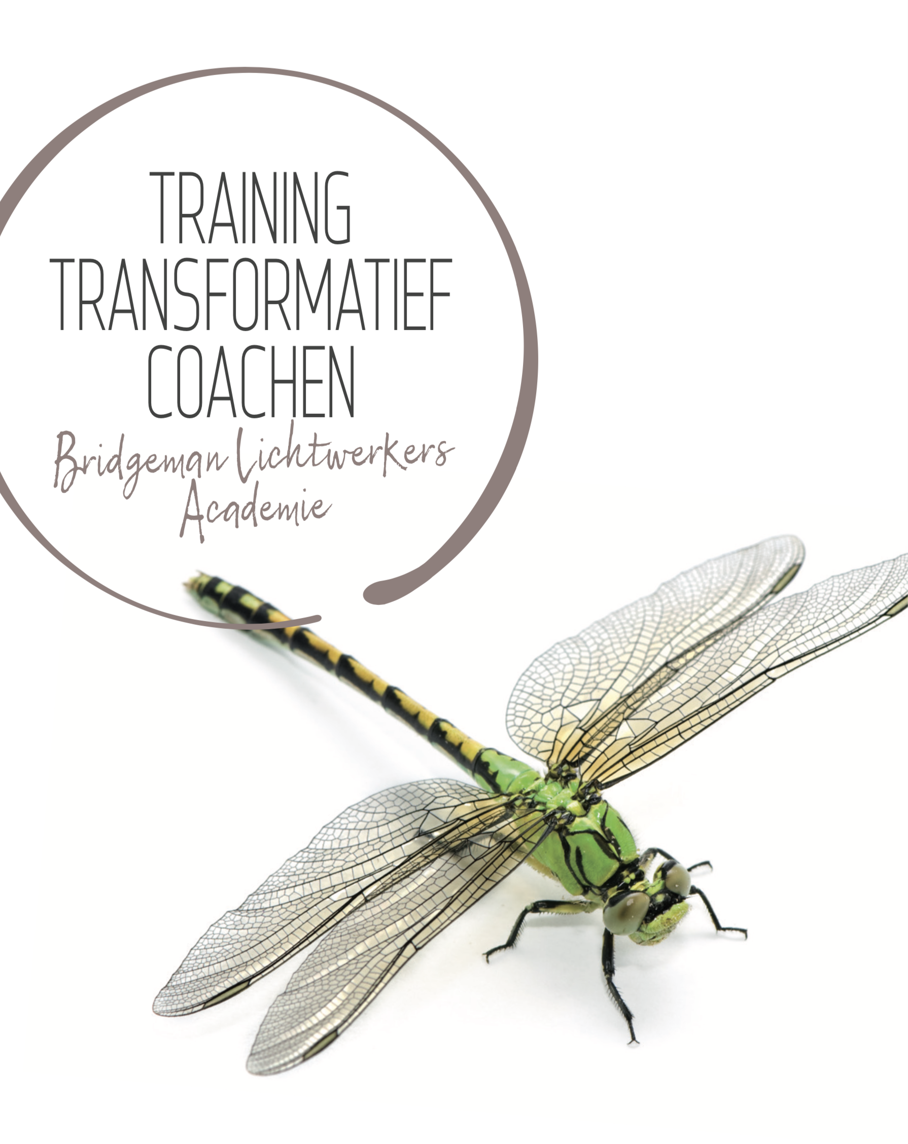 training transformatief coachen