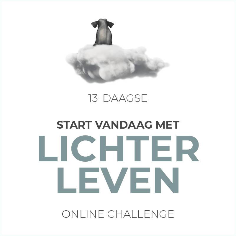 Online Challenge 13 dagen